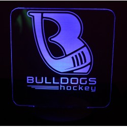 Club / Team Logo Only LED...